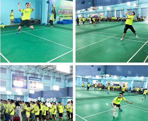 Black Forest Cup Badminton Contest